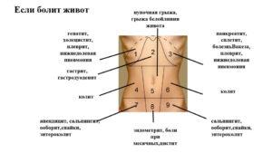 Боль при нажатии на желудок