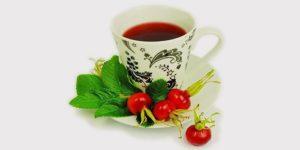 Шиповник для похудения: состав и свойства, как заваривать плоды и пить отвар на диете, отзывы о результатах