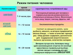 Правильный режим питания и распорядок дня - часы приема пищи и интервалы между едой