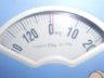 Обзор напольных весов Delta
